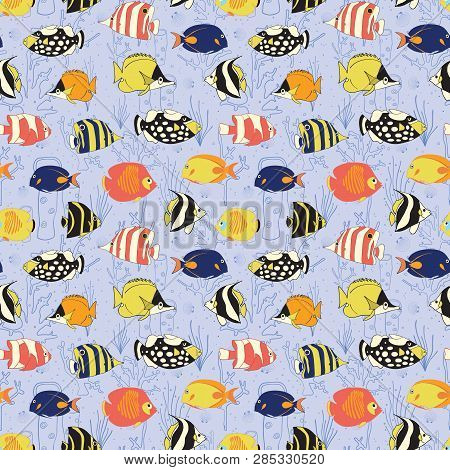 Seamless Vector Fish Pattern. Butterflyfish, Clown Triggerfish, Damsel, Anemonefish, Angelfish, Clow