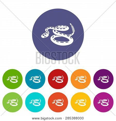 Rattlesnake Icons Color Set Vector For Any Web Design On White Background