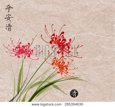Three Red Chrysanthemum Flowers On Vintage Paper Background. Traditional Japanese Ink Wash Painting