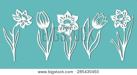 Tulip. Narcissus. A Set Of Flowers For Decoration. Templates For Paper Cutting, Laser Cutting And Pl