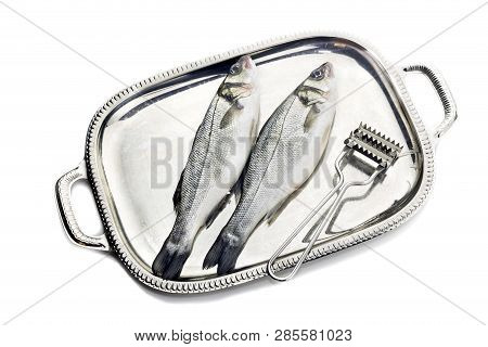 Fish European Bass (dicentrarchus Labrax) On A Metallic Tray And Fish Cleaner On A White Background