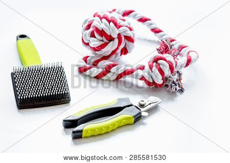 Concept Pet Care And Grooming On White Background
