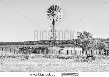 A Landscape With Windmill And Flowers At Matjiesfontein Near Nieuwoudtville In The Northern Cape Pro