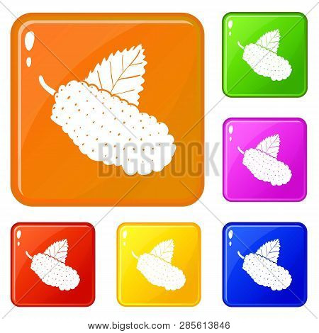 Mulberry Icons Set Collection Vector 6 Color Isolated On White Background