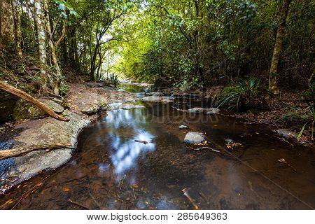 Calm Waters Of Morans Creek In Lamington National Park, Qld, Australia