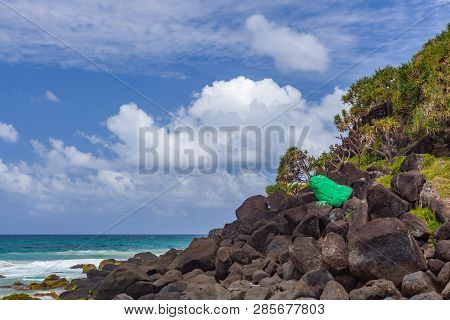 The Green Froggie - Large Painted Stone Frog Near Snapper Rocks In Coolangatta, Qld, Australia