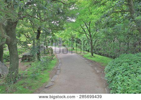 The Relax Area Of Walkway At Koko En Garden