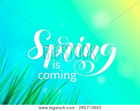 Summer Or Spring Glade With Green Grass. Spring Is Coming Lettering. Vector Illustration
