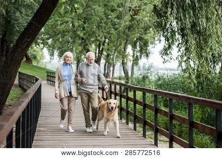 Happy Senior Couple Walking With Adorable Dog In Park
