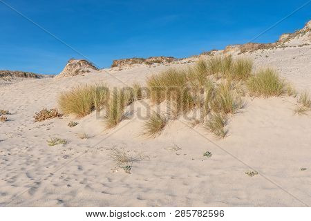 French Landscape - Bretagne. Beautiful Sandy Beach And View Over The Dunes.