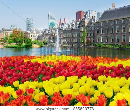 View Of Binnenhof - Dutch Parliament At Spring With Tulips, The Hague, Holland
