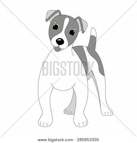 Terrier Images Illustrations Vectors Free
