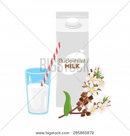 Vegetarian Paper Pack Of Buckwheat Milk With Glass And Brunch Of Cereal. Vector Illustration Isolate