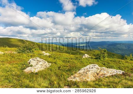 Stones On Grassy Alpine Meadow. Beautiful Summer Landscape In Mountains. Wonderful Sunny Weather. Fl