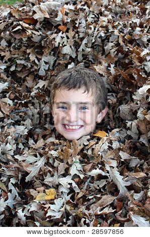 Young boy hiding in a leaf pile smiling