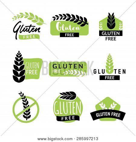 Gluten Free Drawn Vector & Photo (Free Trial) | Bigstock