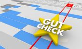 Gut Check Review Opinion Feedback Gantt Chart 3d Illustration poster