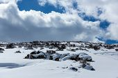 Snow covered desert landscape with puffy clouds and blue sky poster