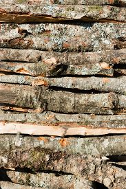 Firewood Logs Piled On To A Heap. Natural Texture. Vertical Composition.