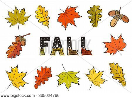 Fall Lettering. Set Of Isolated Autumn Leaves. Hand-drawn Autumn Maple And Oak Leaves, Acorns. Lette