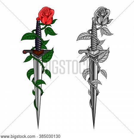 Vector Rose Design With Thorns Wrapping A Dagger, Vector Color And Grayscale