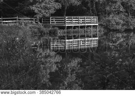 Black And White Of A Pond Overlook With Mirror-like Reflection At Crowder Park In Apex, North Caroli