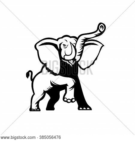 Stencil Illustration Of An African Elephant, Loxodonta, African Bush Elephant Or African Forest Elep