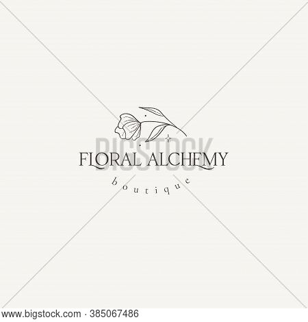 Abstract Hand Drawn Decorative Vintage Horizontal Flower Logo With Stars. Icon, Vector Illustration