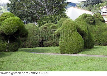 The Francisco Alvardo Park With Its Famous Topiary In Zarcero, Costa Rica