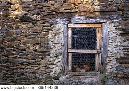 Two Chickens At The Door Of An Old Farmyard With Stone Walls, Rural Scene