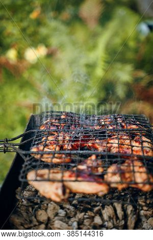 Bbq With Fiery Chicken Wings On The Grill Outdoor Picnic. Spending Time Together With The Family At