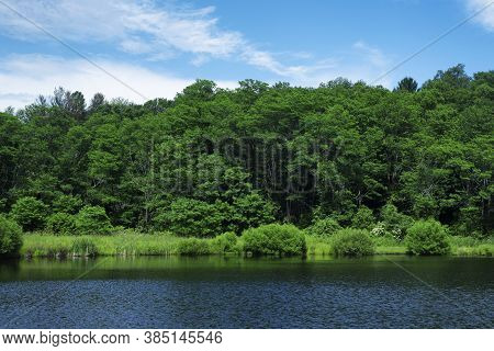 A Lake Within Sunnybrook State Park In Torrington Connecticut On A Sunny Summer Day In New England.