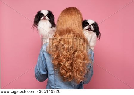 Devoted Woman Holding And Comforting Pet Dog