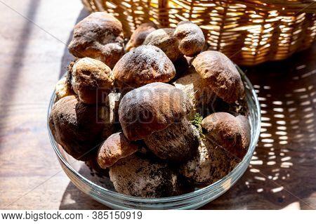 King Of Edible Mushrooms, Boletus Edulis Porcini Cepe Ready To Cook In Pasta Or Ravioli