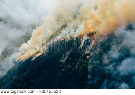 Aerial View Smoke Clouds Of Wild Fire. Fire In Forest Spreads, Natural Disaster. Dry Grass And Trees