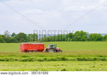 Haymaking. The Harvester Collects Freshly Cut Grass Into A Tractor Trailer.