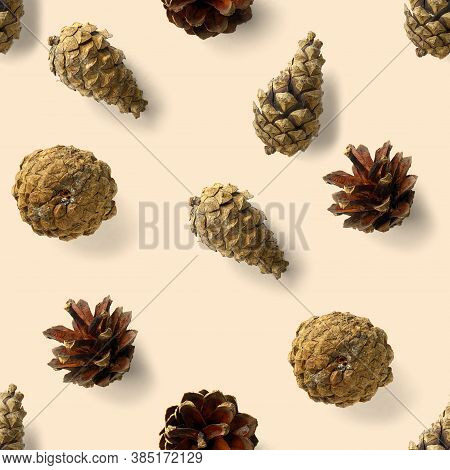 Seamless Christmas Pattern From Pine Cones On White Background. Modern Pine Cone Christmas Collage.