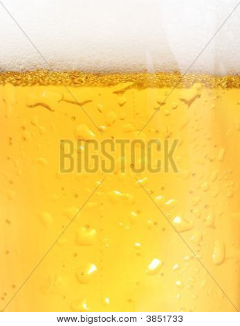 Closeup Of Beer Glass