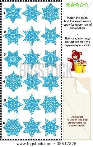 Fancy snowflakes visual puzzle