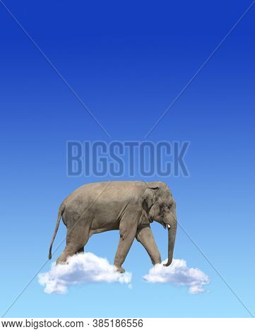 Vertical banner with elephant above clouds on blue sky background. Cute elephant in the sky. Fantastic scene with an elephant walking on the clouds. Mock up template. Copy space for text