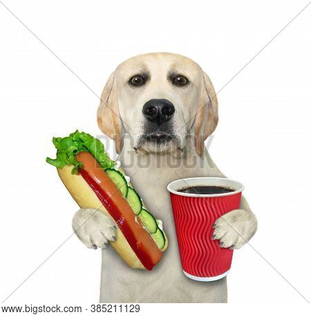 A Dog Is Eating A Hot Dog And Drinking Black Coffee. White Background. Isolated.