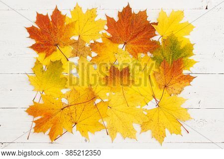 Multi-colored Maple Leaves Are Scattered On A White Textured Wooden Table. Colors Of Autumn