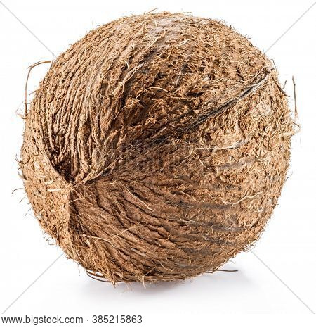 Coconut -large brown tropical fruit isolated on white background.