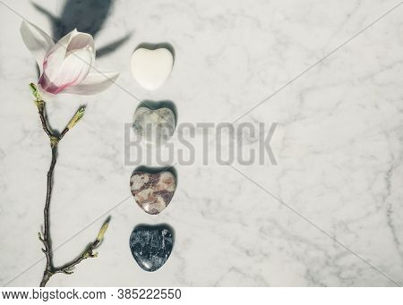 Flat Lay Composition With Beautiful Spring Magnolia Flowers And Grey Stones On White Marble Backgrou