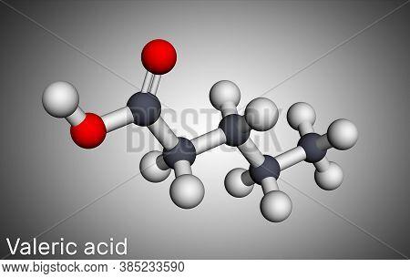 Valeric Acid, Pentanoic Acid Or Valerate Molecule. Molecular Model. 3d Rendering