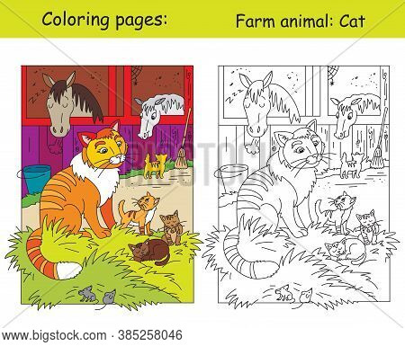Coloring Pages And Colorful Illustration With Cute Cat And Little Kittens On The Farm. Cartoon Vecto