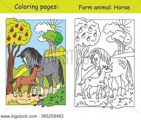 Coloring Pages With Cute Horse And Her Foal Standing In Apple Garden. Cartoon Vector Illustration. C