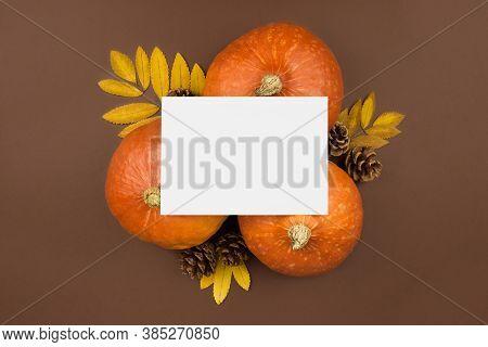 Three Orange Pumpkins, Dried Leaves, Fir Cones, White Card Mockup Flat Lay On Brown Background. Autu