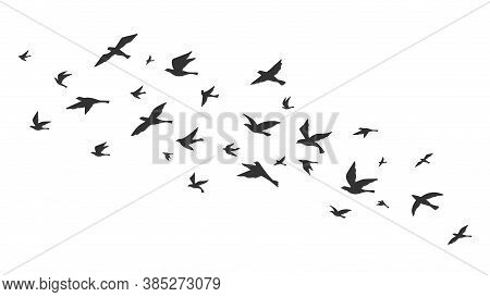 Flying Bird. Free Birds Flock In Flight Black Silhouettes. Tattoo Image, Freedom Symbol Wildlife Vec