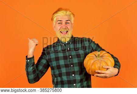 Homegrown Pumpkin. Eat Healthy. Organic Farming. Family Farm. Man Bearded Rustic Farmer Presenting V